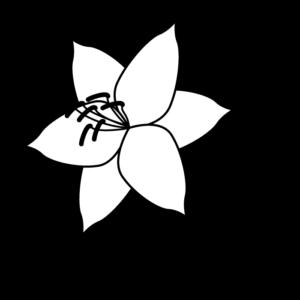 カサブランカの白黒イラスト