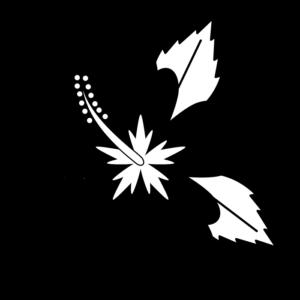 ハイビスカスの白黒イラスト02