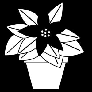 ポインセチアの白黒イラスト02