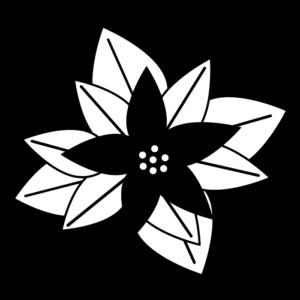 ポインセチアの白黒イラスト03