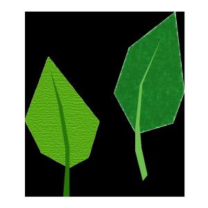 葉っぱのコラージュ風イラスト