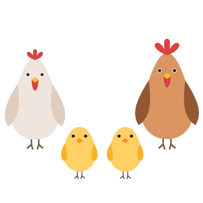 鶏家族のデザインイラスト 無料 イラストk