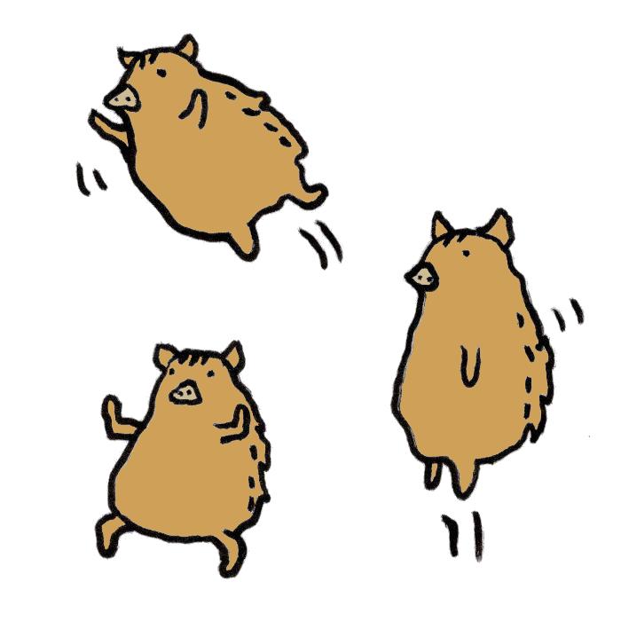 猪動きの手書きイラスト 無料 イラストk