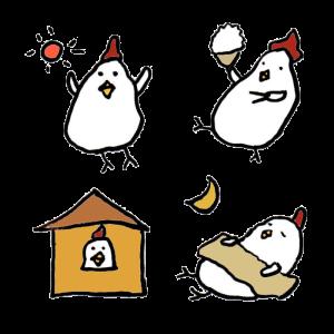 鶏(家)の手書きイラスト