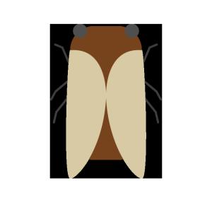 蝉のシンプルイラスト