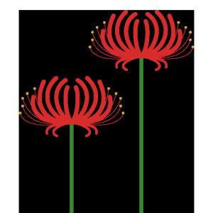 彼岸花(2輪)のシンプルイラスト