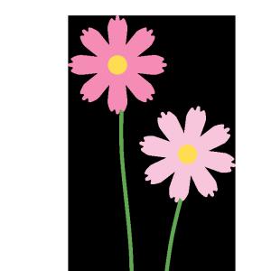 コスモス(ピンク、薄ピンク)のシンプルイラスト