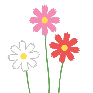 コスモス(白、ピンク、赤)のシンプルイラスト