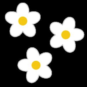 花(白)のシンプルイラスト02