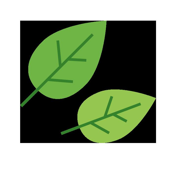 葉っぱのシンプルイラスト 無料 イラストk