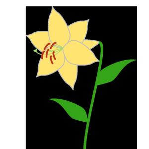 百合(黄色)のシンプルイラスト