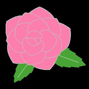 バラ(ピンク)のシンプルイラスト