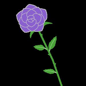 バラ(紫)のシンプルイラスト03