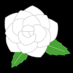 バラ(白)のシンプルイラスト