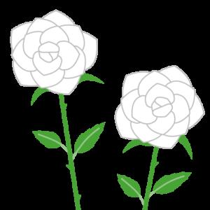 バラ(白)のシンプルイラスト02