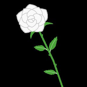 バラ(白)のシンプルイラスト03