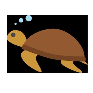 海亀のシンプルイラスト