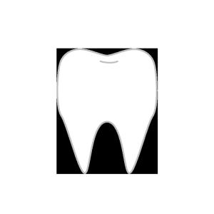 歯のシンプルイラスト 無料 イラストk
