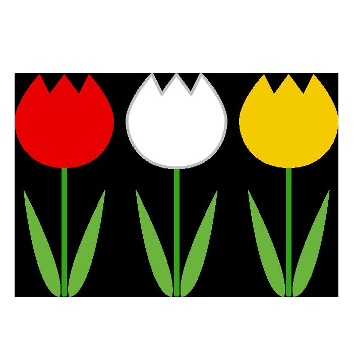 チューリップ赤白黄色のシンプルイラスト 無料 イラストk